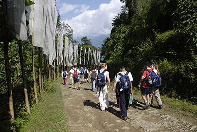 Himalaya Walk